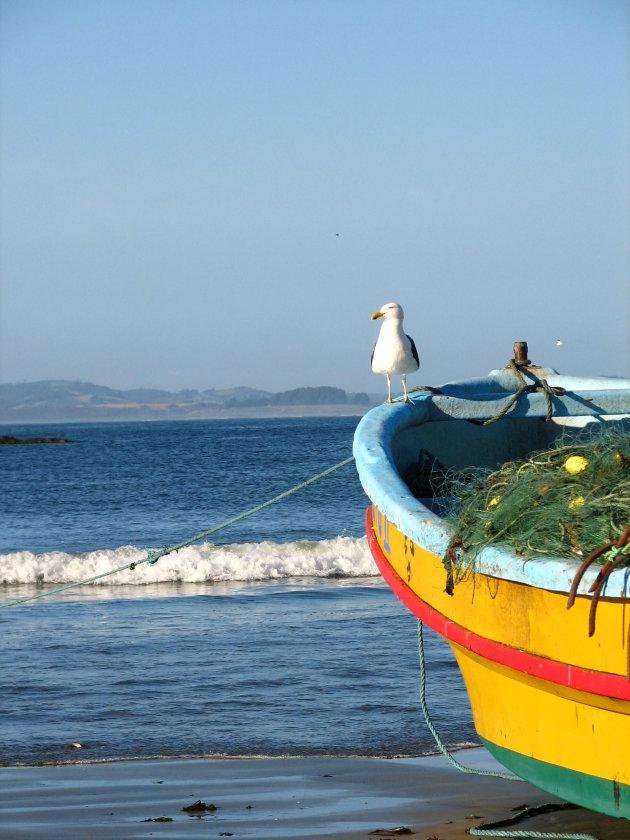 Zicht op zee