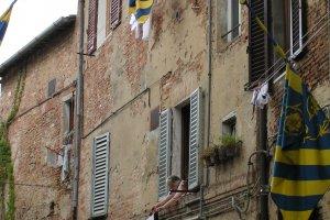 Wasdag Toscane