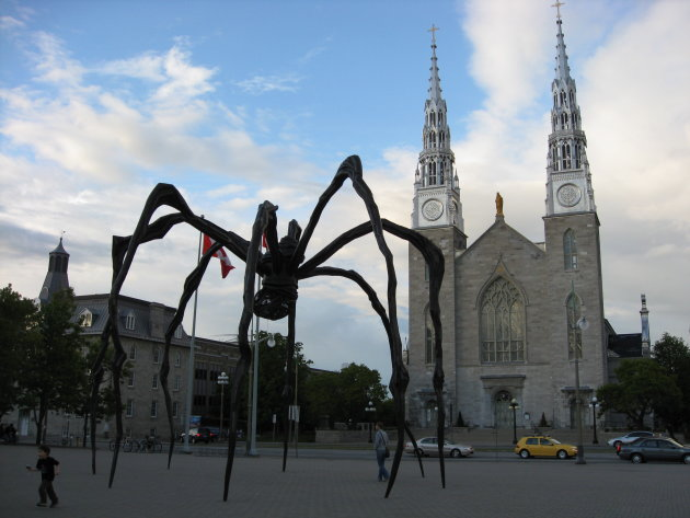 Artistic Spider