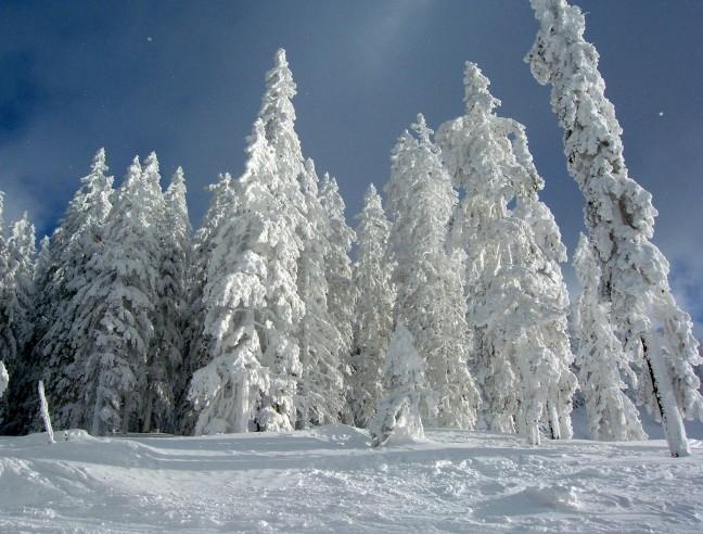 Prachtig winterlandschap!