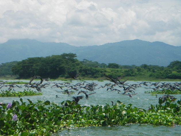 Het meer bij Suchitoto