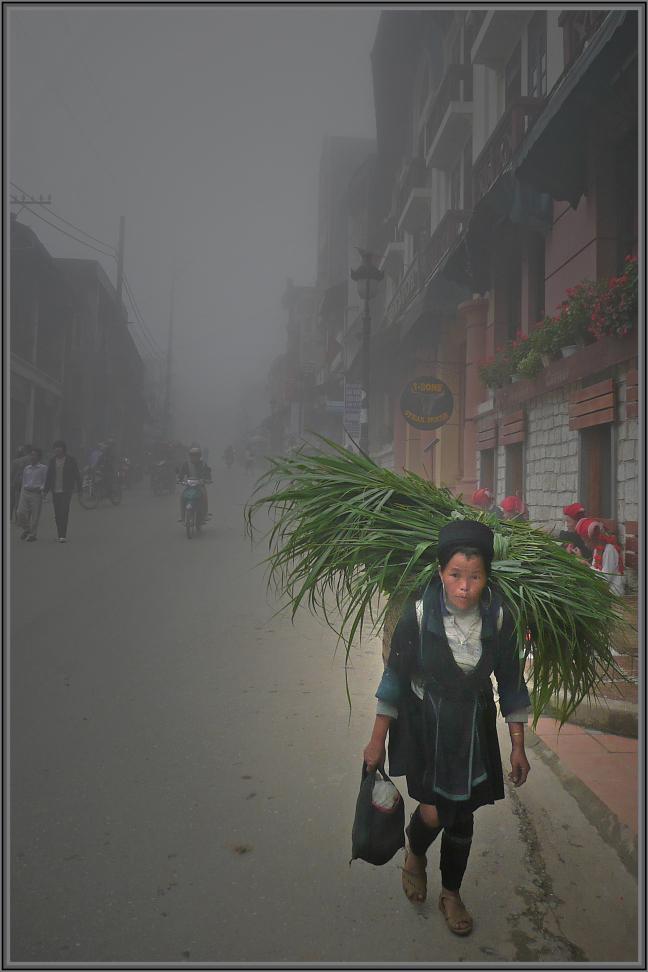 Mist in Sapa