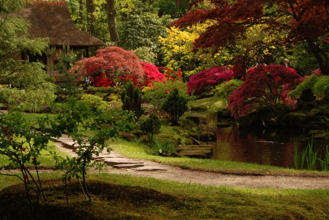 Japanse tuin - Park Clingendael - Den haag