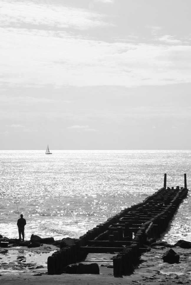 Staring at the sea