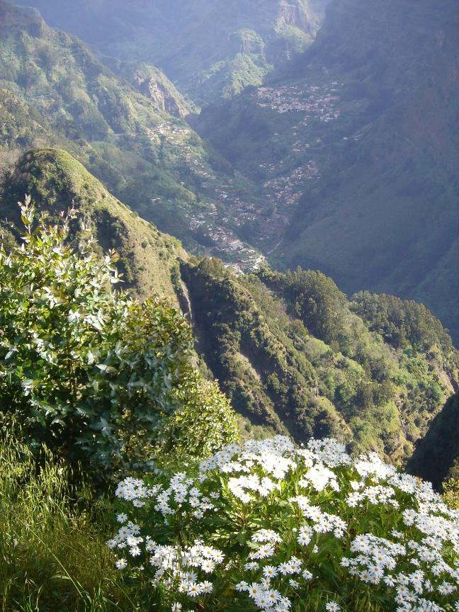 Fotogeniek Madeira