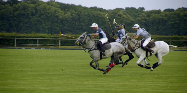 Polo de France