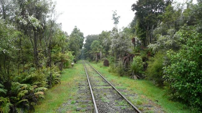 rails door de jungle