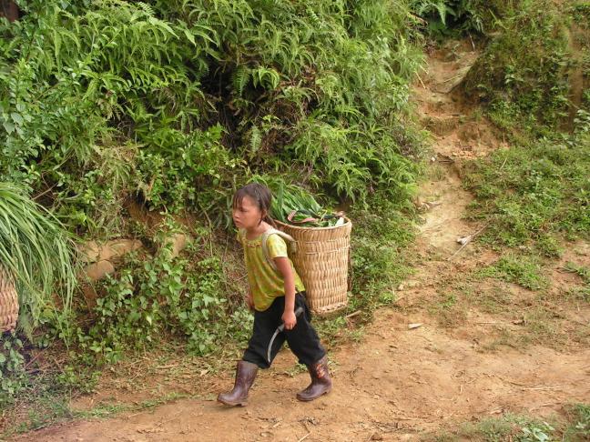 kind in Vietnam