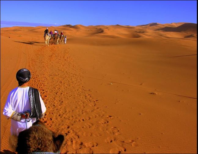 Woestijnwandeling