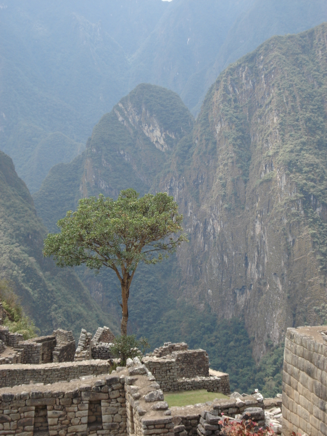 Uitizcht vanuit Machu Picchu