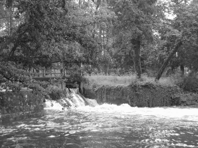 watermolen bij Singraven 2