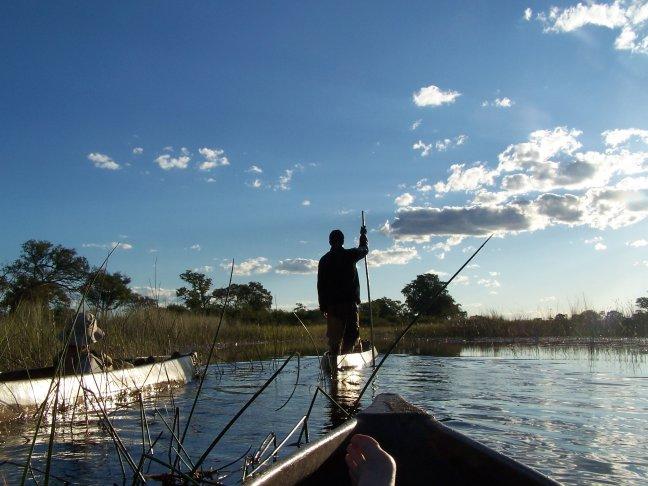 Mokoro captain in de Okavango Delta