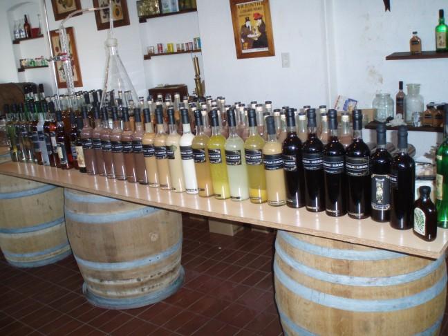 Wijntour Mendoza