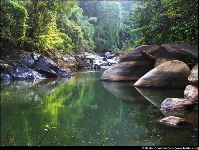 Junglerivier Khao Sok
