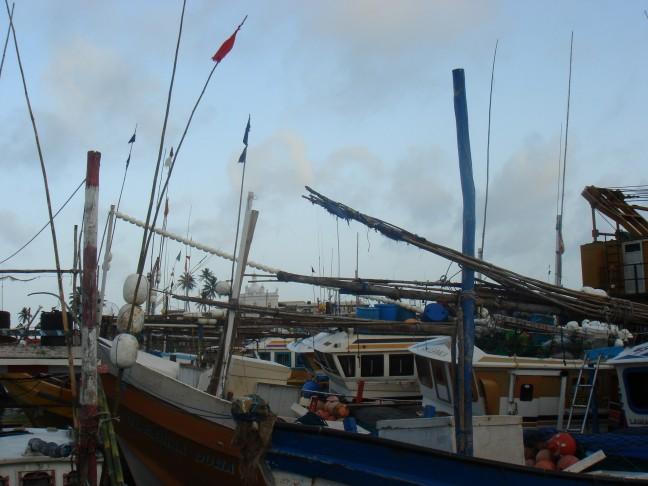 Vissers haven Beruwela