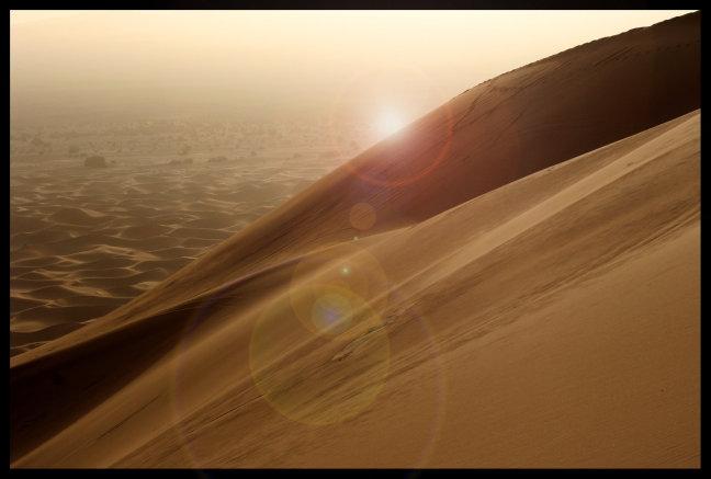 woestijn ontwaakt