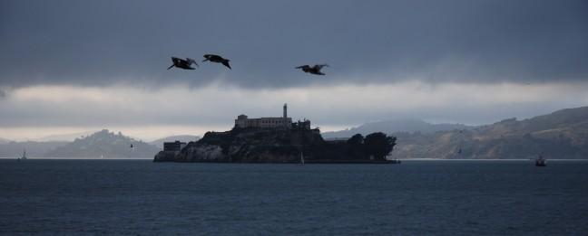 Alcatraz in vogelvlucht