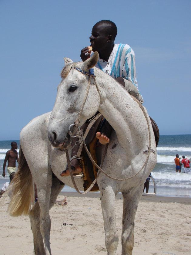 Man op paard