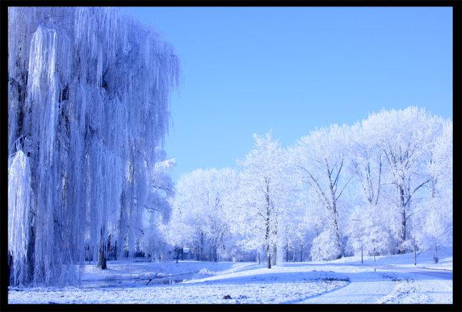 Arnhem in het wit