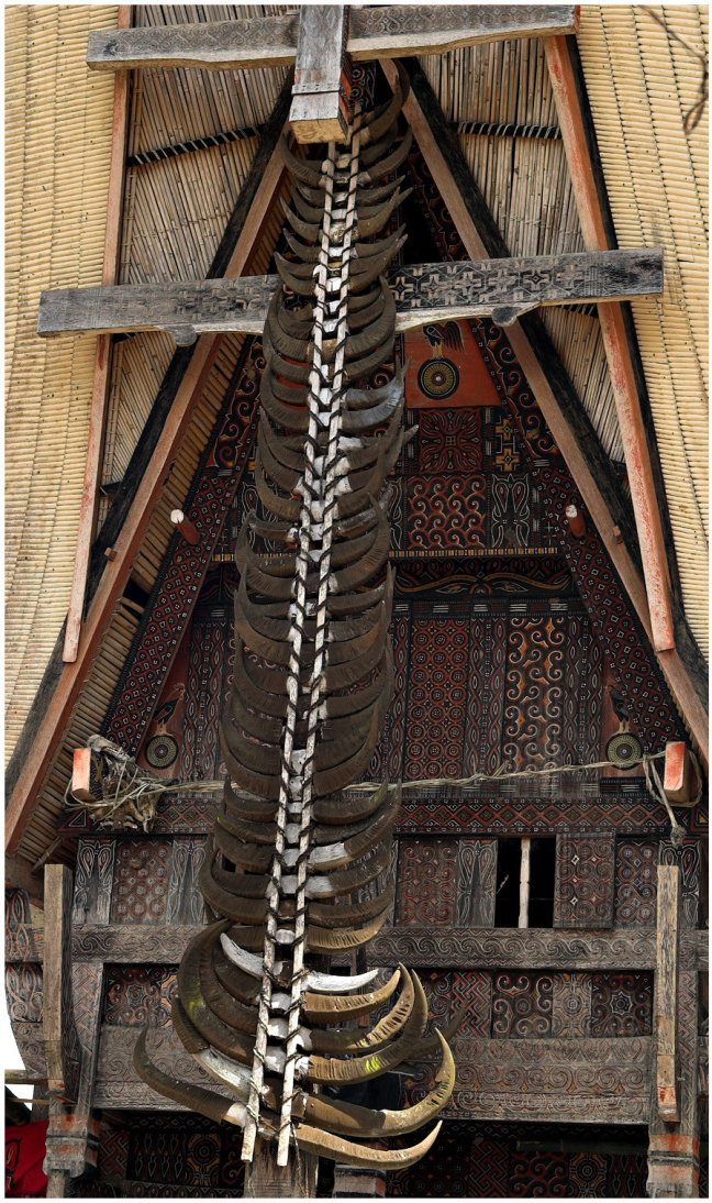 A Tongkan detail