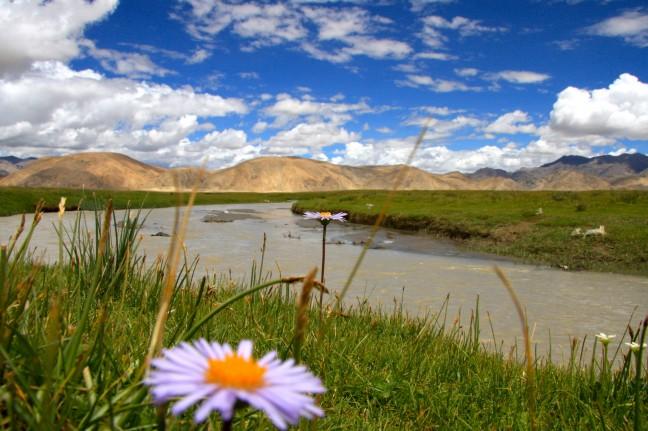 Landschap Tibet