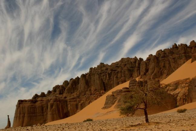 Sahara winds