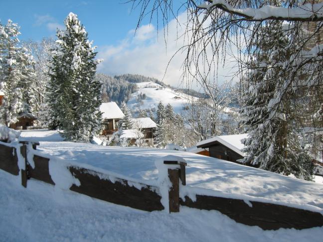Winter in Oostenrijk 2