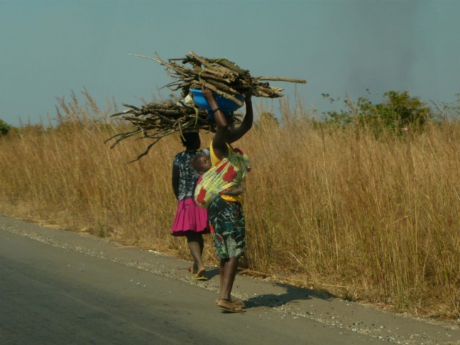 Vrouwen met Sprokkelhout