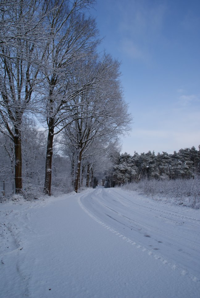 winters mooi