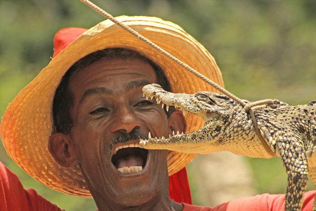 Crocodile Dude