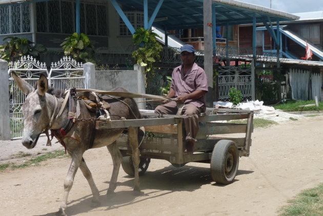 Traditioneel vervoer over de weg