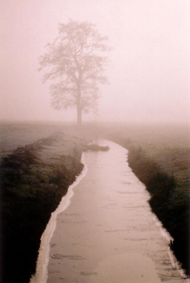 Mist in Peebos