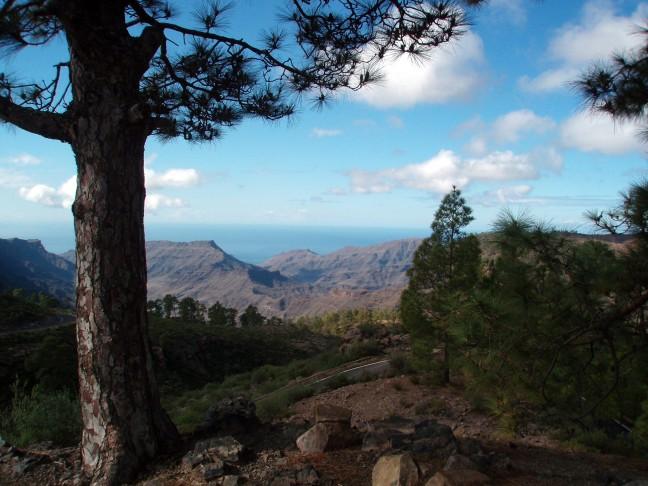 Gran Canaria bij  Cueva de las Niñas