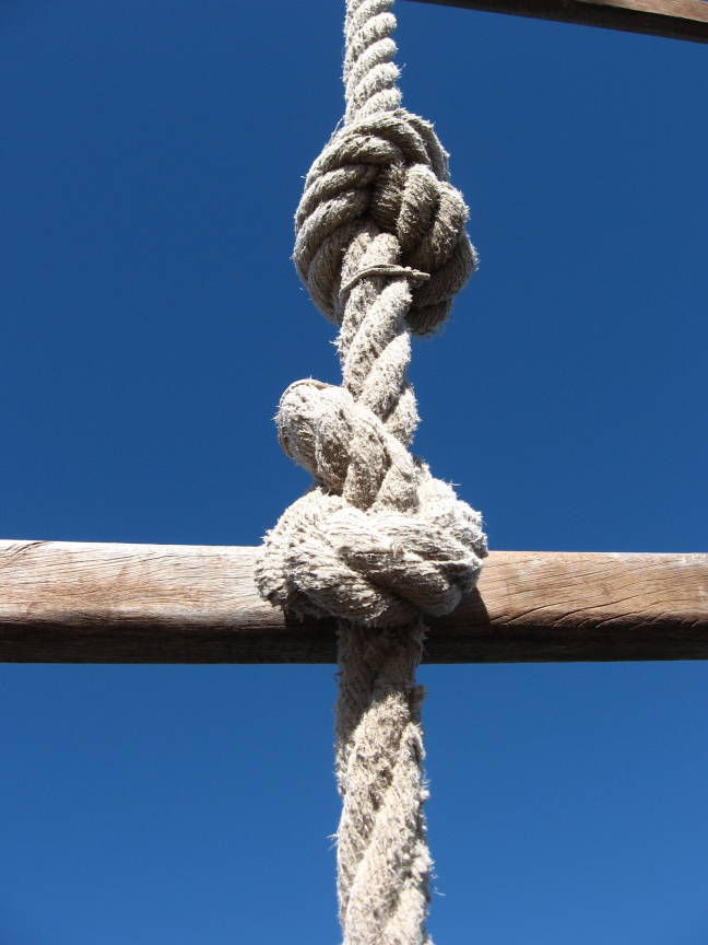 Sailor's Knot