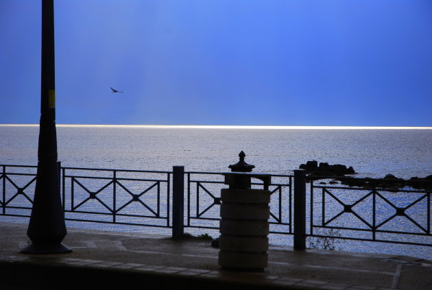 de vogel het zonlicht en de zee