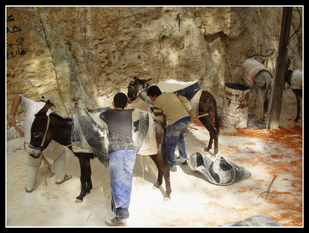 Transport met ezels