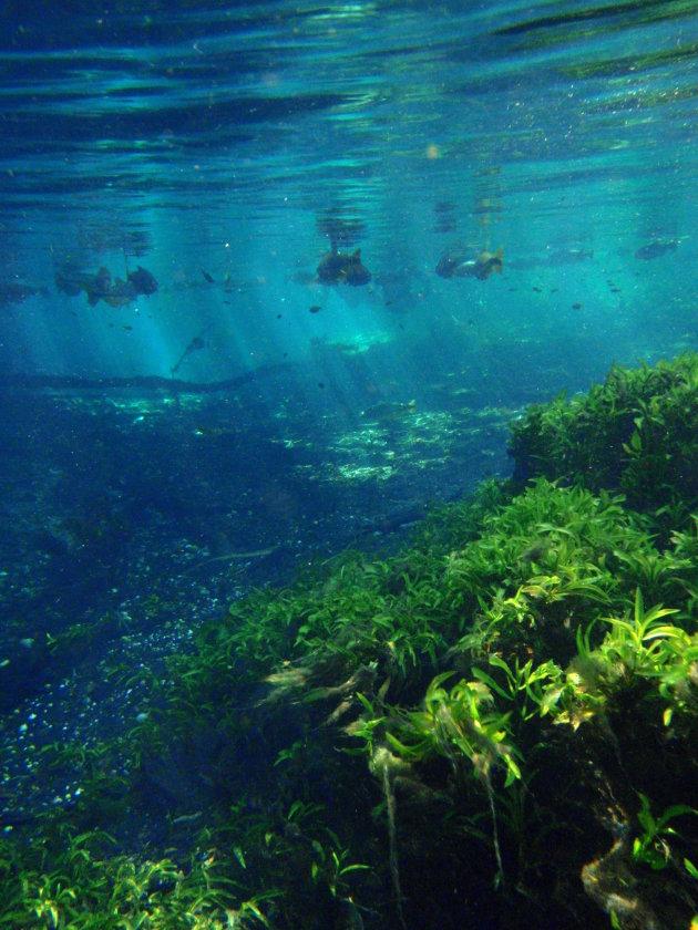 licht stralen onderwater
