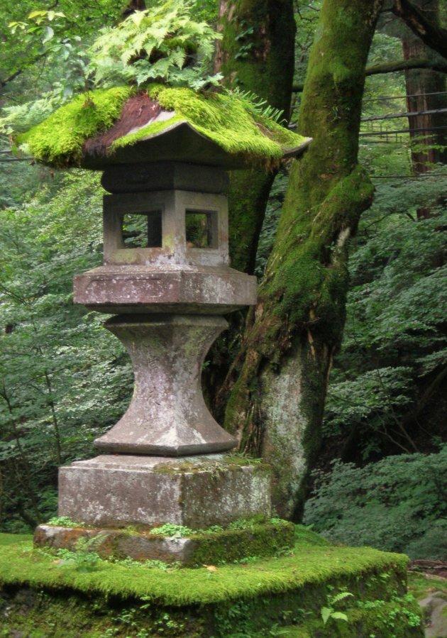 Tempelmos