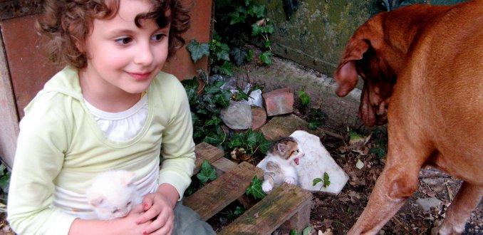 Meisje knuffelt poesje en ander poesje uit het nest blaast naar hond