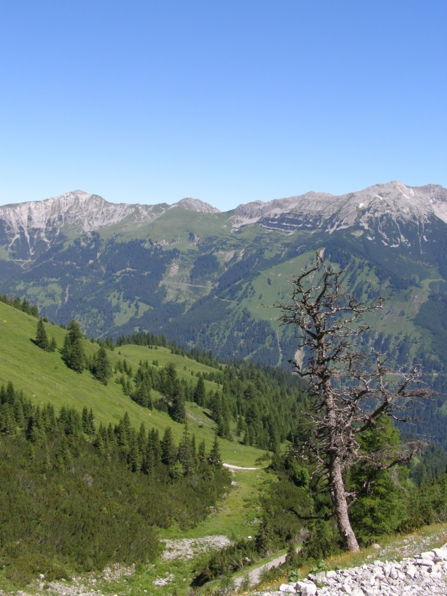 Oostenrijkse Alpen nabij Zugspitze.