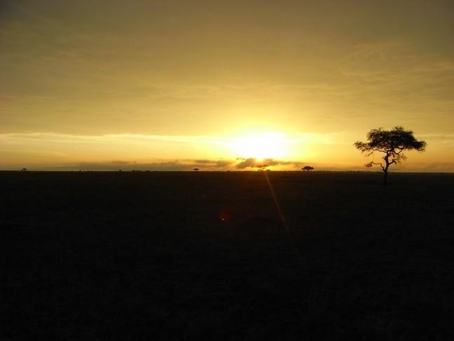 Zonsopkomst in Serengeti