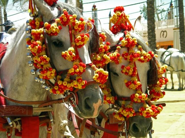 Versierde paarden
