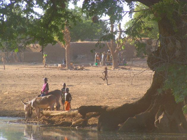 Dorpsleven in de Sahel