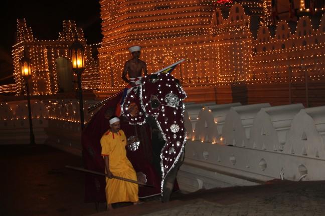 tempel met olifant na processie