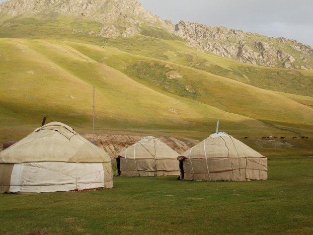 Yurt-kamp