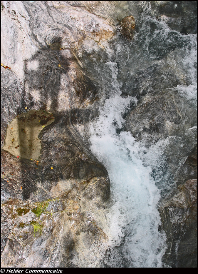 Waterportret