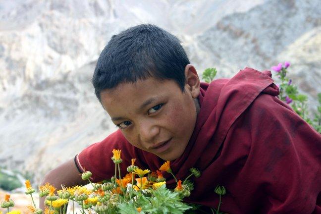 jonge monnik bij Lamayuru gompa, Ladakh