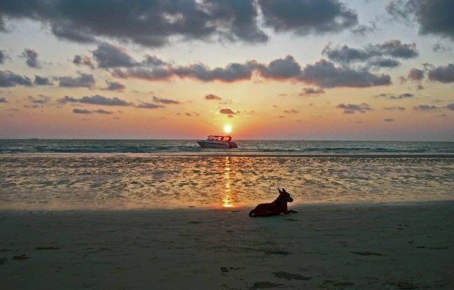 Tropisch stranden Thailand.