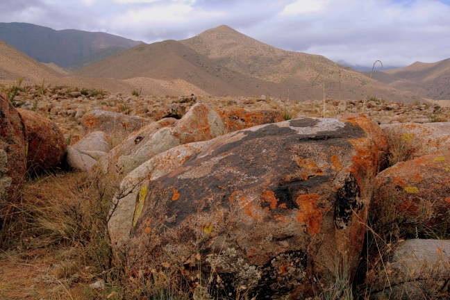 schilderingen op eeuwenoude bruine stenen