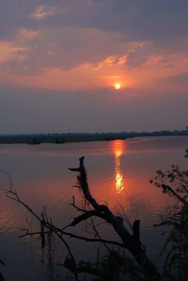 Zonsondergang Chobe